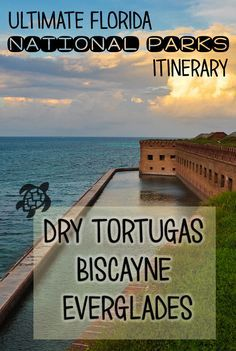 Visit Key Biscayne, Everglades & Dry Tortugas National Parks with this 7-day Florida National Parks itinerary +travel tips for Miami & the Keys. Dry Tortugas, Florida Vacation, Florida Travel, Travel Usa, Travel Tips, Florida Keys, Travel Destinations, South Florida, Michigan Travel