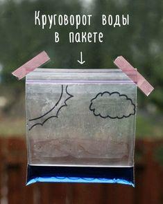 Нам потребуются один пакет на «молнии», вода, пищевой краситель синего цвета…