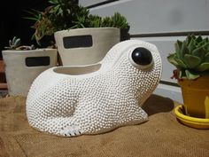 74 Best Frog Images In 2018 Frogs Sculpture Clay