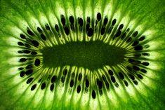 75  Amazing Retina HD Macro Photography Of Bugs World