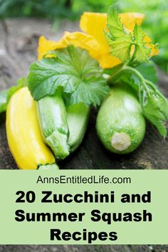 20 Zucchini and Summer Squash Recipes; Wondering what to do with all that zucchini and summer squash? Here are 20 Zucchini and Summer Squash Recipes your family will enjoy, from breads to waffles to soups and chips; there is something on this list for everyone!  http://www.annsentitledlife.com/recipes/20-zucchini-and-summer-squash-recipes/