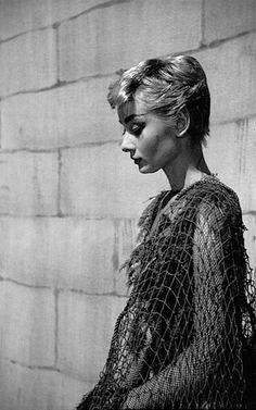 Rare Audrey Hepburn — Audrey Hepburn photographed by Milton H. Greene on...