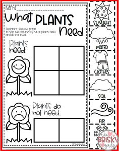 Plant Life Cycle, Needs of a Plant, Parts of a Plant, Plant Life Cycle Activitie… – Modern Design - Modern Kindergarten Science, Kindergarten Worksheets, Spring Activities, Preschool Activities, Plant Life Cycle Worksheet, Plant Lessons, Planting For Kids, All About Plants, Parts Of A Plant