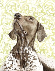 A personal favorite from my Etsy shop https://www.etsy.com/listing/491540368/german-shorthaired-pointer-painting