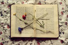 . Reading Habits, World Of Books, Still Life, Darkness, Investing, Lost, Dark