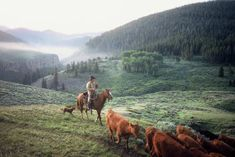 Cowboys of Padlock Ranch, Nevada - Gallery 1 - Adam Jahiel ...