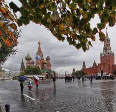 Rainy day in Moscow   Photographer @ur21_taniy6_