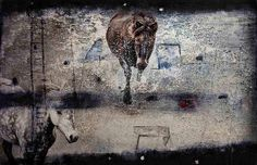 Horses Returning at Night by Nordic Art 365