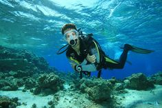 The underwater world around Split is one of the finest with its amazing flora and fauna. Enjoy adrenaline filled Scuba Diving in Split. Scuba Diver Costume, Underwater Wallpaper, One Day Tour, Amazing India, Scuba Diving Gear, Croatia Travel, Koh Tao, Underwater World, Best Places To Travel