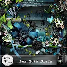 """""""Les Mots Bleus"""" scrap kit valkyrie"""