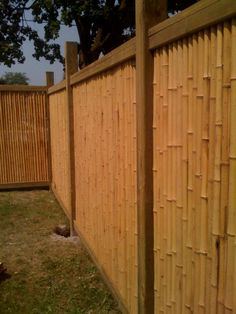 bamboo fences in kingston ontario by jimmy dean