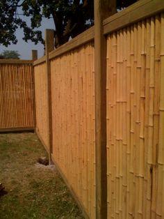 Low Bamboo Fence Maureen Gilmer Morongo Valley Ca Bamboo