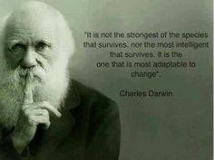 A direct quote from Darwin explaing the role and purpose of evolution and sexual selection.