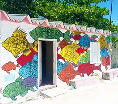 by Inferandt in Holbox, Mexico, 6/15 (LP)