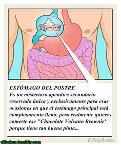"El misterioso caso del ""Estómago del postre"""