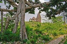 Todos já ouviram falar do espetacular Taj Mahal, mas você conhece o colorido templo de Meenaski Amman, ou a cidade azul de Jodhpur? Não vejo a hora de fazer uma visita...
