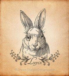 Lapin Bunny Rabbit Digital Download por DreamDigitalDesigns en Etsy