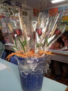 Rosas para Sant Jordi preparadas por el colegio Sant Feliu de Cabrera de Mar