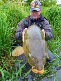 Carp on the Fly: 20 lb math Carp Fishing Tips, Pike Fishing, Fishing Rigs, Fishing Knots, Trout Fishing, Fishing Lures, Fly Fishing, Carp Flies, Common Carp