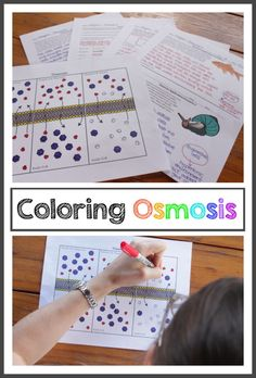 Engage your students using coloring pages to teach osmosis. These coloring pages really help students understand the terms hypertonic, hypotonic, and isotonic.  Created by Bethany Lau