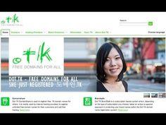 Free Domain setup Dot.tk