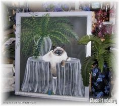 Purrrrfectly Content..painted vintage window