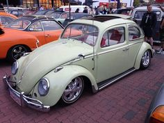 Bug ... vw ... fusca ... beetle ...