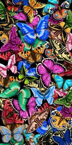 TOPSELLER! Beautiful Butterflies Beach, Bath, Po... $9.00