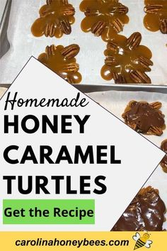 Learn how to make homemade caramel turtles using honey instead of sugar or corn syrup. A quick dip in chocolate and you have the perfect sweet treat. Honey Caramel, Honey Chocolate, Chocolate Treats, Honey Recipes, Great Recipes, Favorite Recipes, Cooking With Honey, Turtle Recipe, Honey Roasted Almonds