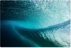 Aquabumps.com  Warp - No. 29466