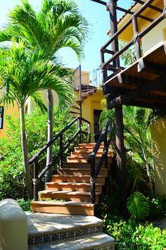 10 Las Palmas Resort Staircase and palms 250