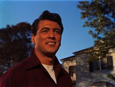 Rock Hudson in All That Heaven Allows  http://family-friendly-movies.com/romance/all-that-heaven-allows/