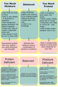 Understanding The Protein-Moisture Balance: How To Tell If Your Hair Needs Moisture or Protein