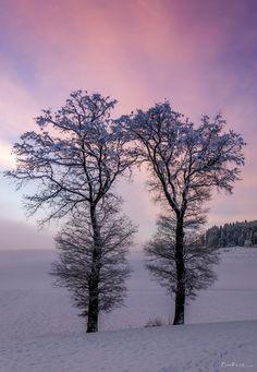Early sunday wake up - TomFear Wake Up, Winter Wonderland, Sunrise, Sunday, Celestial, Glitter, Outdoor, Google, Outdoors