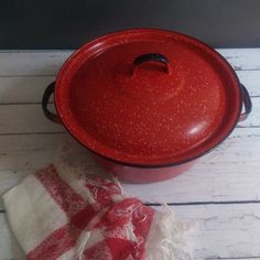 Image result for speckled enamel cookware