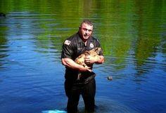 Policía héroe se sumerge en un lago para rescatar a un perrito atrapado - Mascotas 24/7