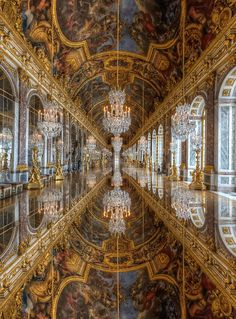 Palace of Versailles ~ France