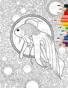1000 Images About Adult Coloring Pages Created By Me On