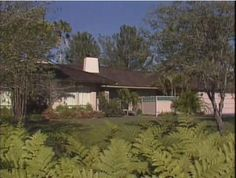 The Golden Girls house is located at 245 North Saltair Avenue in Brentwood