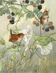 Beatrix Potter-esque -- art by Molly Brett Art And Illustration, Book Illustrations, Beatrix Potter Illustrations, Drawn Art, Ouvrages D'art, Bird Art, Vintage Art, Vintage Kids, Illustrators