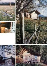 How to build a log cabin for $100... when do we get started??? great article-- from where else but Mother Earth News : )