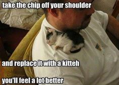 Take the chip off your shoulder and replace it with a kitten. You'll feel MUCH better!