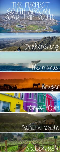 The perfect road trip itinerary for South Africa. Inclluding travel to Cape Town Drakensberg Hermanus to go shark cage diving the Garden Route wine tasting in Stellenbosch and a safari in Kruger! Travel Route, Places To Travel, Places To See, Travel Oklahoma, Travel Trip, Hawaii Travel, Italy Travel, Africa Destinations, Travel Destinations