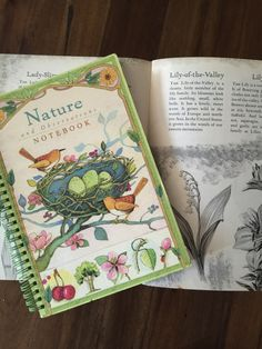 Embarking On A Nature Journaling Journey And Simplifying