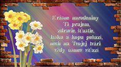 Krásne narodeniny Ti prajem, zdravie, šťastie, lásku a kopu peňazí, nech na Tvojej tvári vždy úsmev víťazí Neon Signs