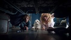 The babadook 9.5/10