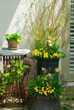 Pretty container arrangements are in every free sp...