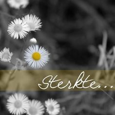 Sympathy Verses, Condolence Messages, Condolences, Afrikaanse Quotes, Happy Birthday Pictures, Death Quotes, Wish Quotes, Blond Amsterdam, Wishes Images