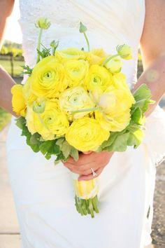 lemon yellow ranunculus