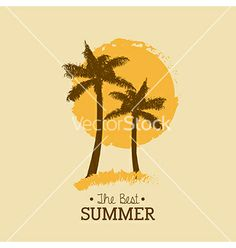Summer palm tree by Giuseppe_R on VectorStock®